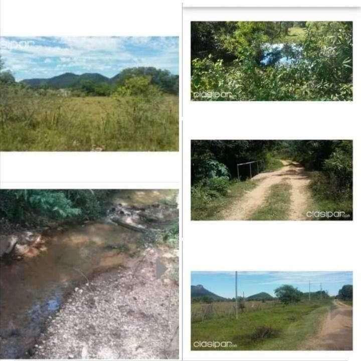 14 hectáreas en Paraguarí cod 1473 - 0