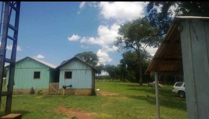 Campo de 156 has. en Isla Alta – Itapua - 1