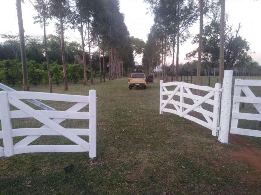 Campo de 156 has. en Isla Alta – Itapua - 0