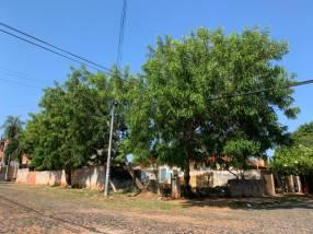 Terreno en esquina en barrio Herrera