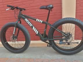 Bicicleta Fat Bike