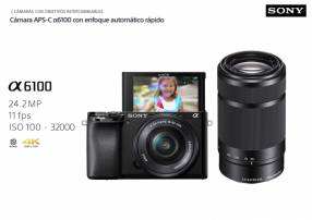Sony A6100 Kit 16-50mm F/3.5-5.6 OSS + 55-210mm F/4.5-6.3 OS