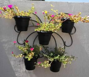 Porta planteras