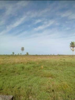 Terreno de 4.911 hectáreas en Arroyos y Esteros