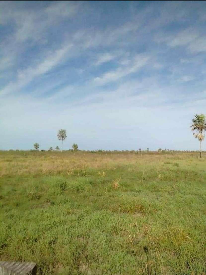 Terreno de 4.911 hectáreas en Arroyos y Esteros - 0