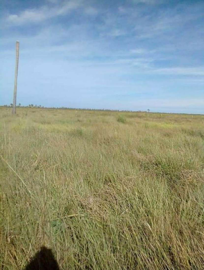 Terreno de 4.911 hectáreas en Arroyos y Esteros - 1