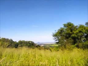 Terreno de 9.585 m2 en Sapucai sobre empedrado