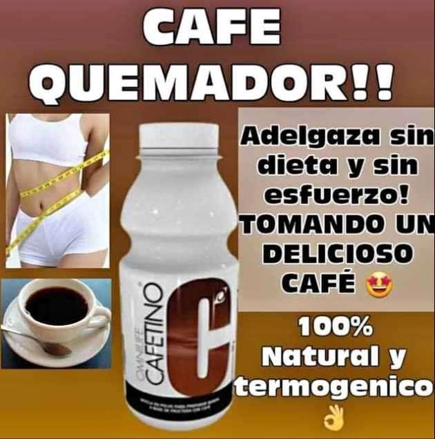 Cafetino - 4