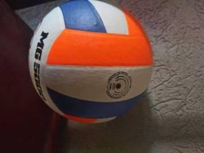 Pelotas de volley profesional