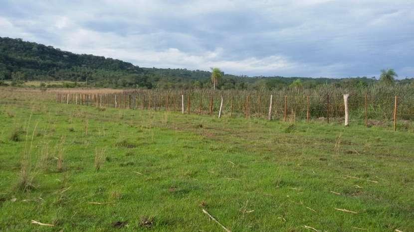 Campo de 102 hectáreas - 0