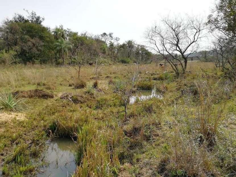Campo de 102 hectáreas - 1