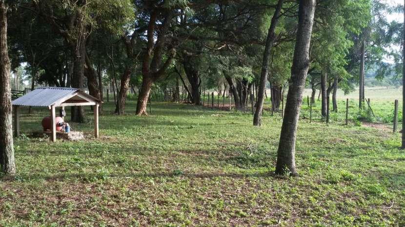 Campo de 102 hectáreas - 2