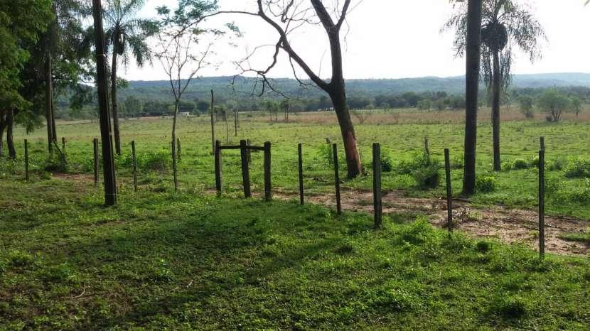 Campo de 102 hectáreas - 5