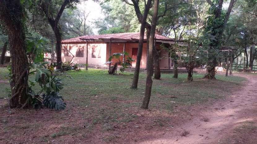Campo de 102 hectáreas - 6