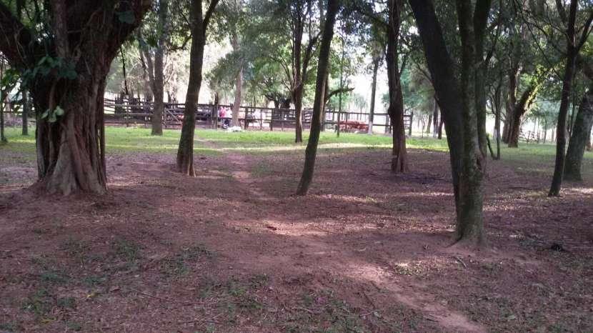 Campo de 102 hectáreas - 7