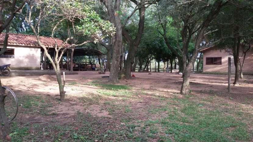 Campo de 102 hectáreas - 8