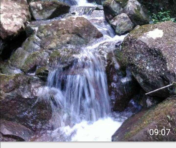 Terreno 576 has de campo natural casa patronal con arroyo - 2
