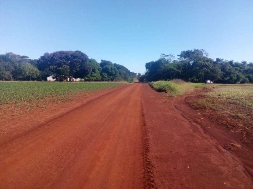 67 hectáreas en Tavapy Alto Paraná - 2