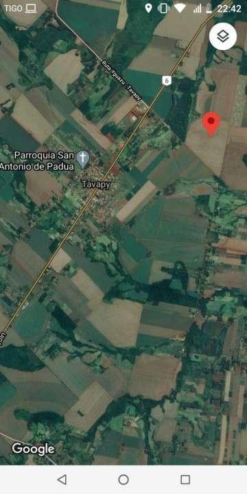 67 hectáreas en Tavapy Alto Paraná - 3