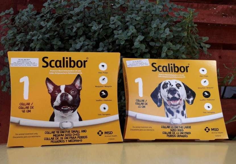 Collar Scalibor 65 cm y 48 cm - 0