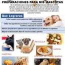 Recetario Canino y Felino preparaciones snacks y demás - 0