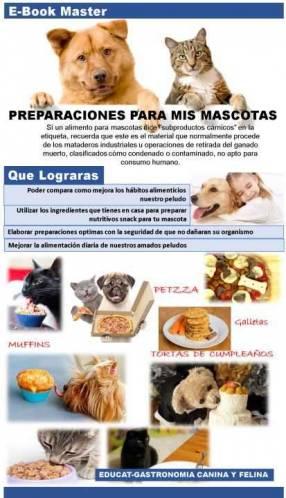 Recetario Canino y Felino preparaciones snacks y demás