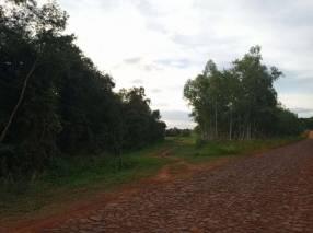 19,3 hectárea en Santa Rita Alto Paraná