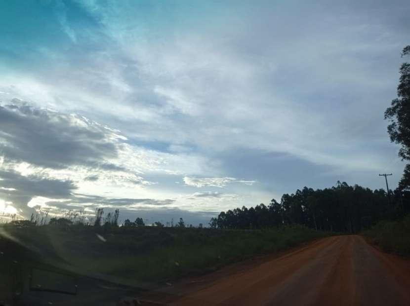 19,3 hectárea en Santa Rita Alto Paraná - 1