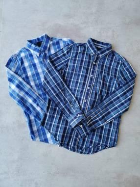 Camisas Ovo