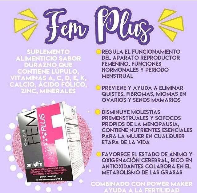 FEM Plus - 2