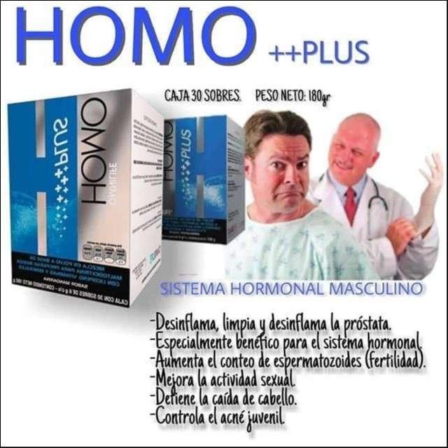 Homo Plus - 1