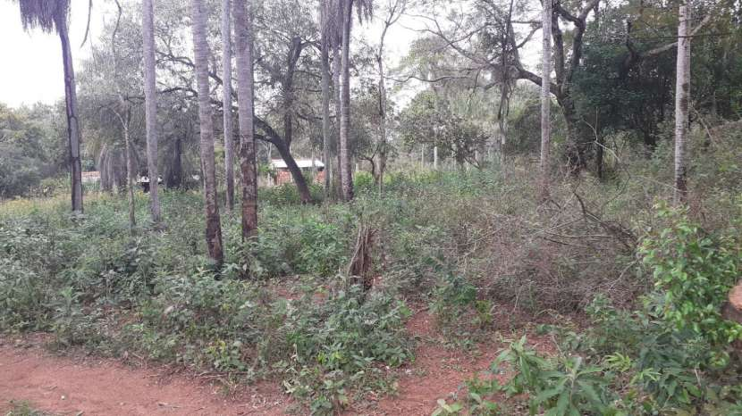 Terreno de 18 hectáreas en Ypacaraí - 3