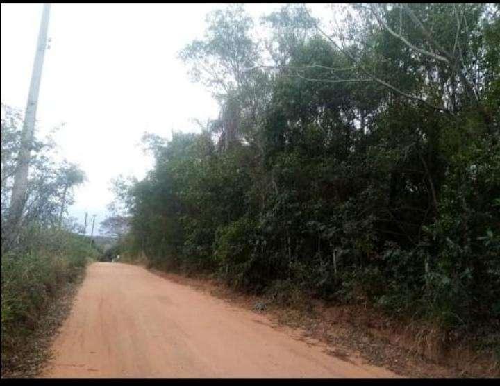 1 hectárea en Tuyucuá Eusebio Ayala - 5