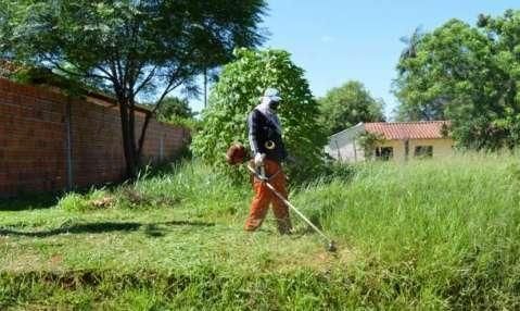 Servicio de limpieza de patios jardinería en general - 0