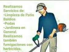 Servicio de limpieza de patios jardinería en general - 2
