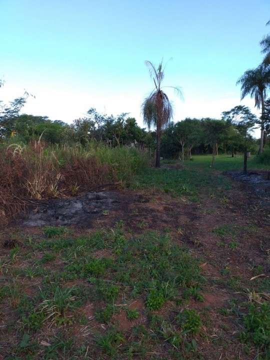 Terreno en Ypané Fracción Jardín de Oro - 0