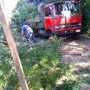 Trabajos de poda destronque y limpieza de terrenos - 3