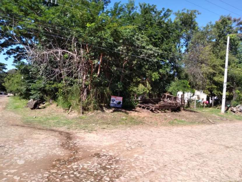 Terrenos en Lambaré - 3