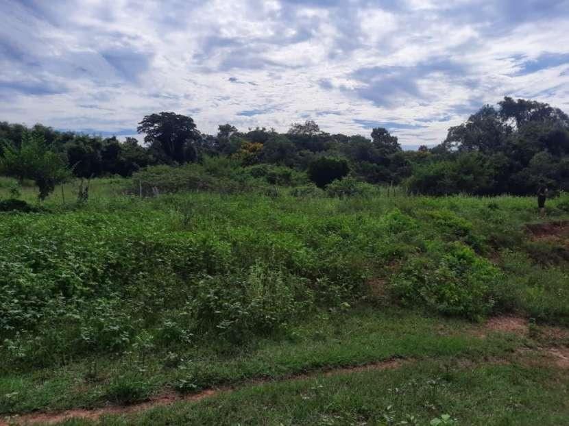 Terreno de 10 hectáreas en 25 de Diciembre - 0