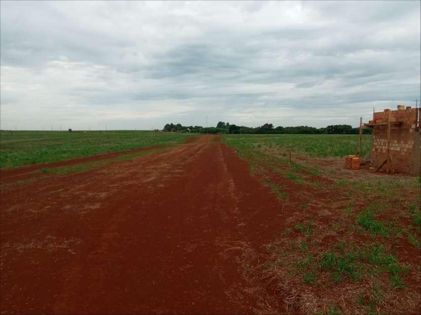 Terrenos en Santa Rita Alto Paraná - 3