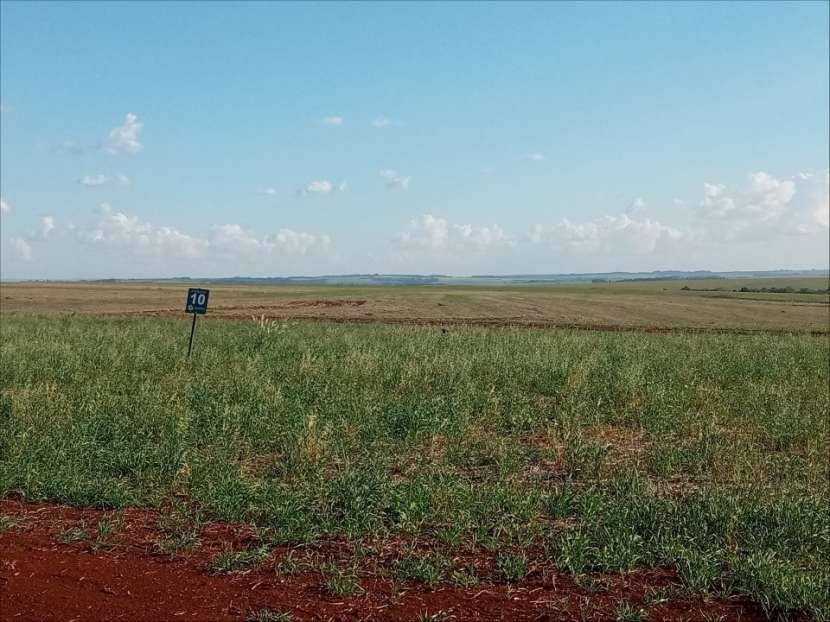 Terrenos en Santa Rita Alto Paraná - 6