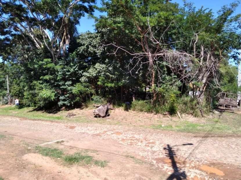 Terrenos en Lambaré - 2