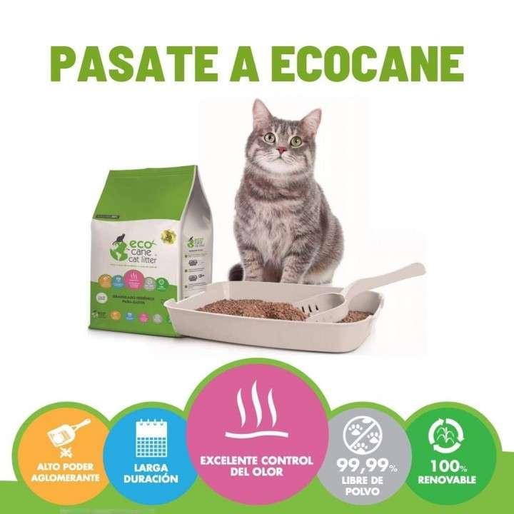 ECO CANE arena para gatos Cat Litter - 0