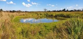 81 hectáreas aptas para agricultura y ganadería