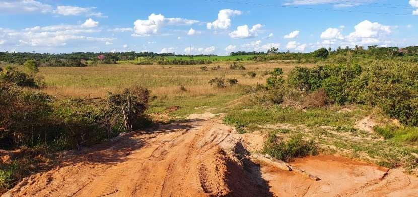 81 hectáreas aptas para agricultura y ganadería - 1