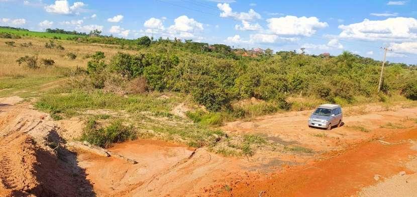 81 hectáreas aptas para agricultura y ganadería - 5