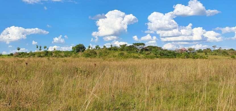 81 hectáreas aptas para agricultura y ganadería - 3