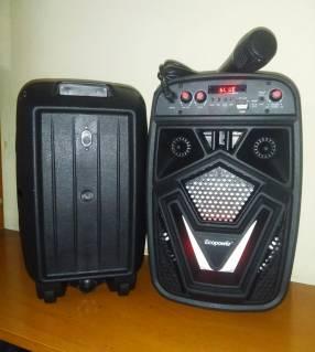 Radio portátil 6.5 pulgadas con micrófono incluido