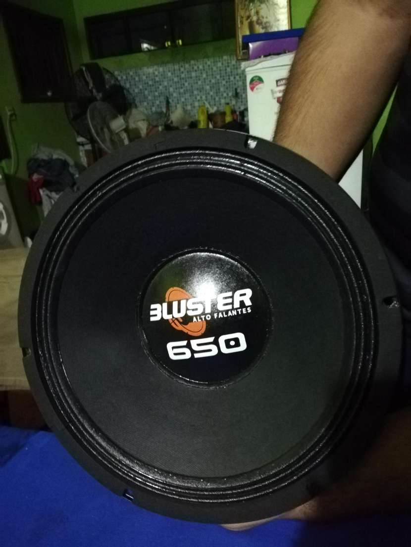 Parlante Bluster 650 de 8ohm - 0