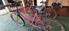 Bicicletas para dama